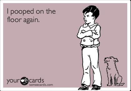 I pooped on thefloor again.