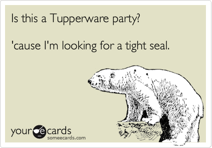 Is this a Tupperware party?  'cause I'm looking for a tight seal.