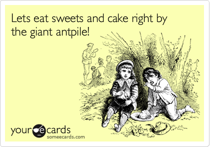 Lets eat sweets and cake right by the giant antpile!