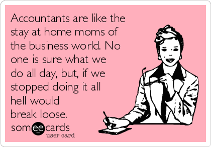 Accountants are like the stay at home moms of the business world. No one is sure what we do all day, but, if we stopped doing it all hell would break loose.