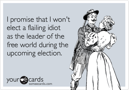 I promise that I won'telect a flailing idiotas the leader of thefree world during the upcoming election.