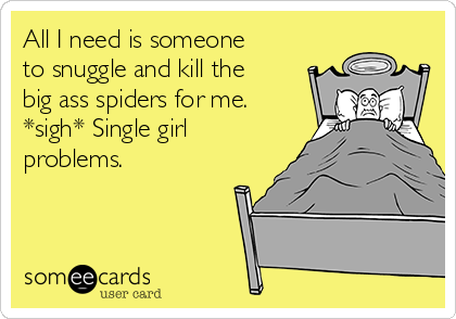 All I need is someone to snuggle and kill the big ass spiders for me. *sigh* Single girl problems.