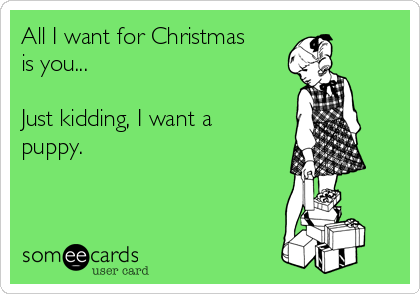 All I want for Christmas is you...  Just kidding, I want a puppy.
