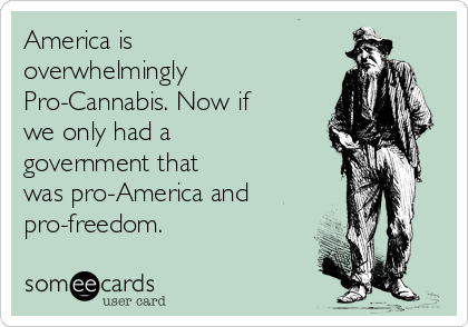 America is overwhelmingly Pro-Cannabis. Now if we only had a government that was pro-America and pro-freedom.