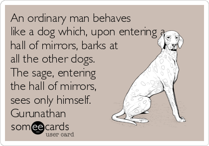 An ordinary man behaves like a dog which, upon entering a hall of mirrors, barks at all the other dogs. The sage, entering the hall of mirrors, sees only himself. Gurunathan