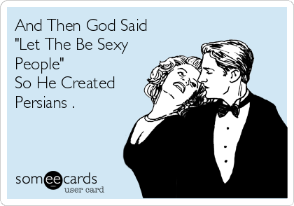 """And Then God Said """"Let The Be Sexy People"""" So He Created Persians ."""