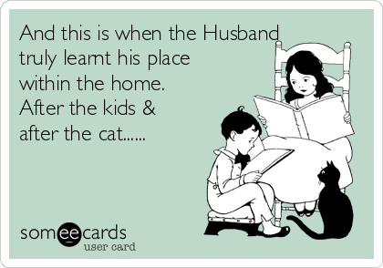 And this is when the Husband truly learnt his place within the home. After the kids & after the cat......