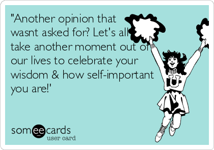 """""""Another opinion that wasnt asked for? Let's all take another moment out of our lives to celebrate your wisdom & how self-important you are!'"""