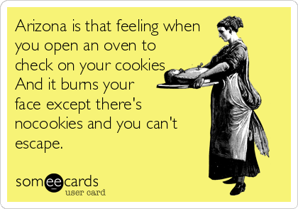 Arizona is that feeling when you open an oven to check on your cookies And it burns your  face except there's nocookies and you can't escape.