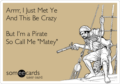 """Arrrr, I Just Met Ye And This Be Crazy  But I'm a Pirate So Call Me """"Matey"""""""