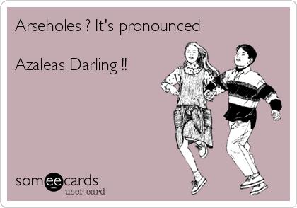 Arseholes ? It's pronounced  Azaleas Darling !!