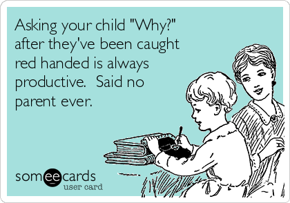 """Asking your child """"Why?"""" after they've been caught red handed is always productive.  Said no parent ever."""