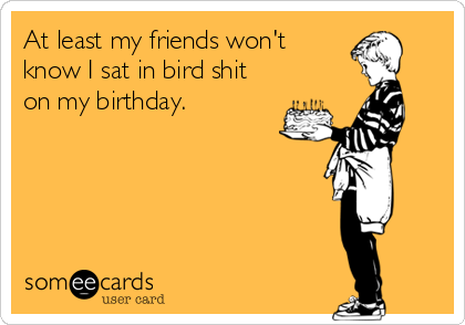 At least my friends won't know I sat in bird shit on my birthday.