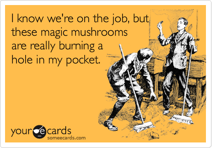 I know we're on the job, butthese magic mushroomsare really burning ahole in my pocket.