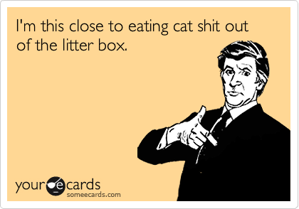I'm this close to eating cat shit out of the litter box.