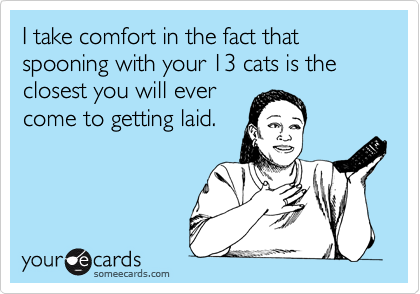 I take comfort in the fact that spooning with your 13 cats is the closest you will ever come to getting laid.