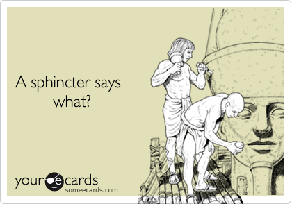 A Sphincter Says What Courtesy Hello Ecard