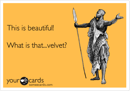 This is beautiful!  What is that...velvet?