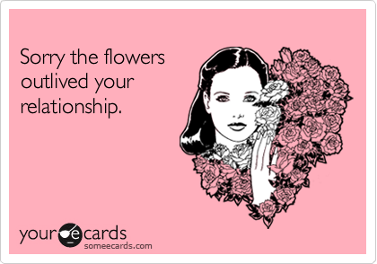 Sorry the flowers