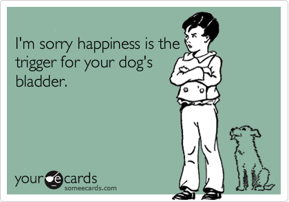 I'm sorry happiness is thetrigger for your dog'sbladder.