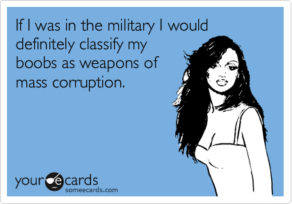 If I was in the military I would definitely classify my boobs as weapons of  mass corruption.