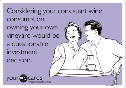 Considering your consistent wine consumption, owning your own vineyard would be a questionable investment decision.