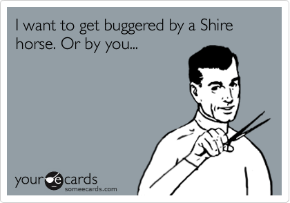 I want to get buggered by a Shire horse. Or by you...