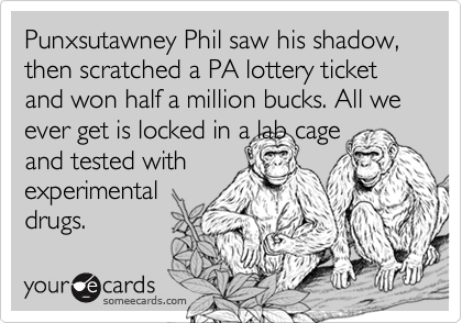 Punxsutawney Phil saw his shadow,