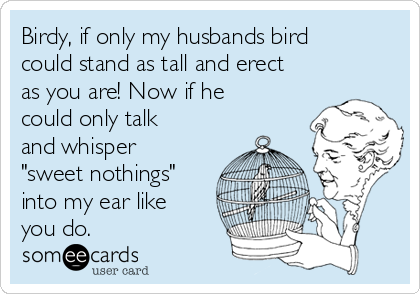 """Birdy, if only my husbands bird could stand as tall and erect as you are! Now if he could only talk and whisper """"sweet nothings"""" into my ear like you do."""