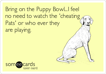 Bring on the Puppy Bowl...I feel no need to watch the 'cheating Pats' or who ever they are playing.