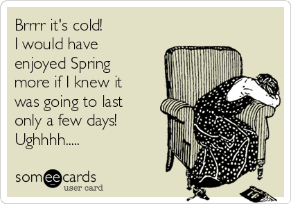 Brrrr it's cold!  I would have enjoyed Spring more if I knew it was going to last only a few days! Ughhhh.....