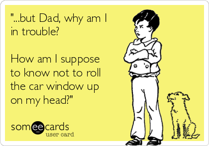 """""""...but Dad, why am I in trouble?  How am I suppose to know not to roll the car window up on my head?"""""""