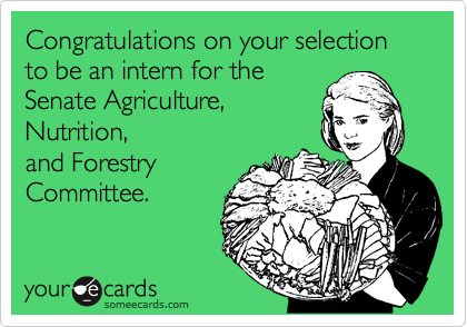 Congratulations on your selection to be an intern for the 