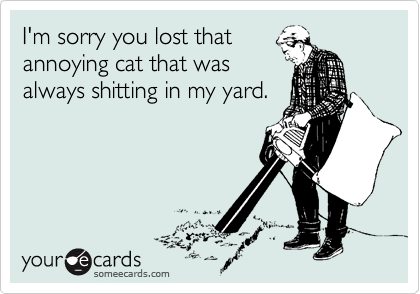 I'm sorry you lost that