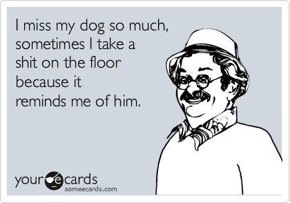 I miss my dog so much,