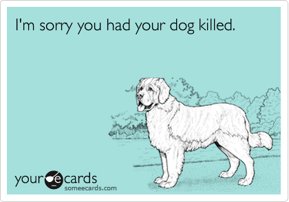 I'm sorry you had your dog killed.