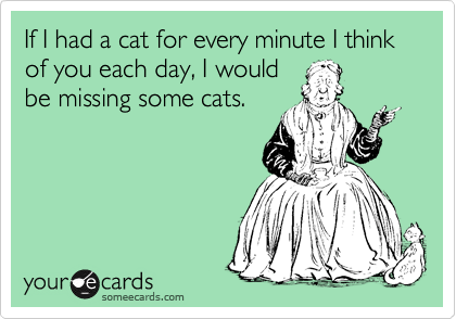 If I had a cat for every minute I think of you each day, I would be missing some cats.