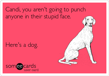 Candi, you aren't going to punch anyone in their stupid face.    Here's a dog.