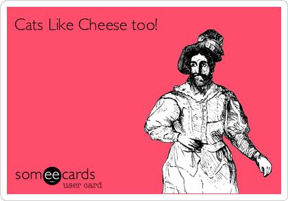 Cats Like Cheese too!
