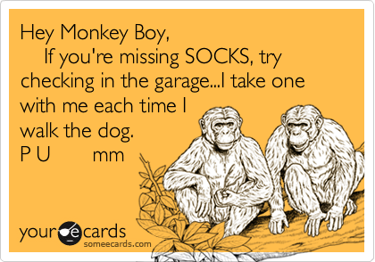 Hey Monkey Boy,