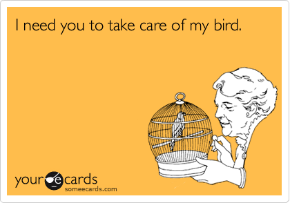 I need you to take care of my bird.