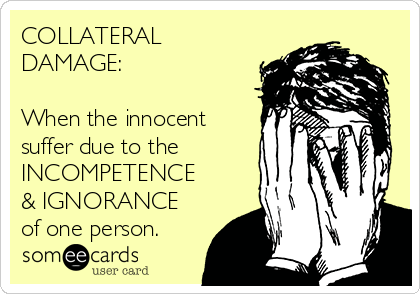 COLLATERAL DAMAGE:  When the innocent suffer due to the INCOMPETENCE & IGNORANCE  of one person.