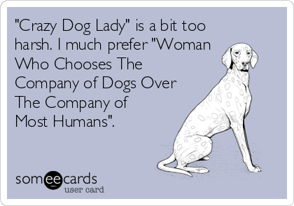 """""""Crazy Dog Lady"""" is a bit too harsh. I much prefer """"Woman Who Chooses The Company of Dogs Over The Company of Most Humans""""."""