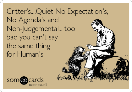 Critter's....Quiet No Expectation's, No Agenda's and Non-Judgemental... too bad you can't say the same thing for Human's.