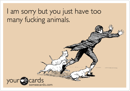 I am sorry but you just have too many fucking animals.