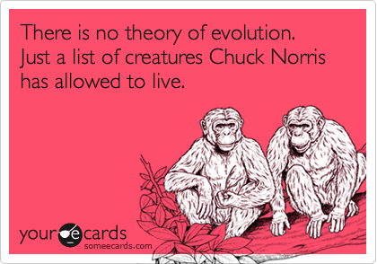 There is no theory of evolution. Just a list of creatures Chuck Norris has allowed to live.
