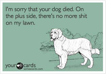 I'm sorry that your dog died. On the plus side, there's no more shit on my lawn.