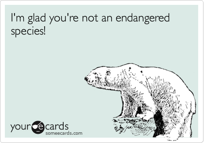 I'm glad you're not an endangered species!