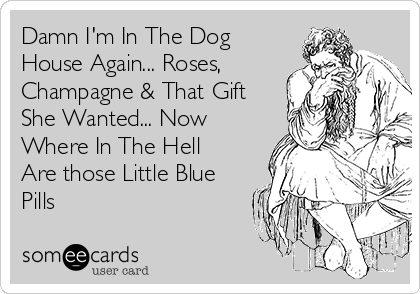 Damn I'm In The Dog House Again... Roses, Champagne & That Gift She Wanted... Now Where In The Hell Are those Little Blue Pills