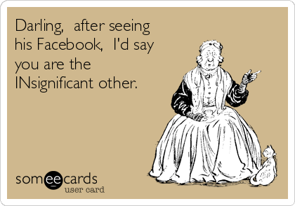 Darling,  after seeing his Facebook,  I'd say you are the  INsignificant other.